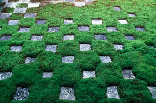 和柄「Stone garden」:スマホ壁紙(13)