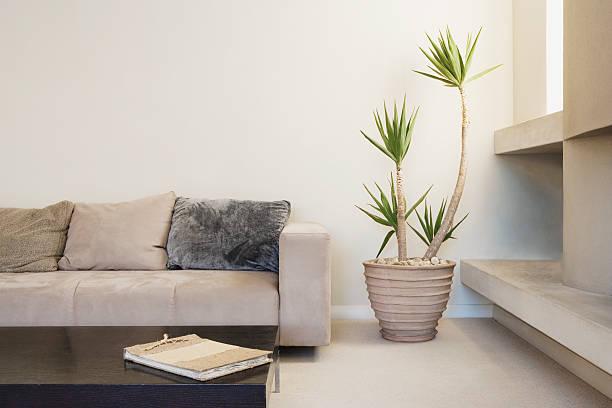 Modern living room with potted plant:スマホ壁紙(壁紙.com)