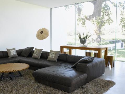 Animal Skin「Modern living room and glass wall in modern home」:スマホ壁紙(18)