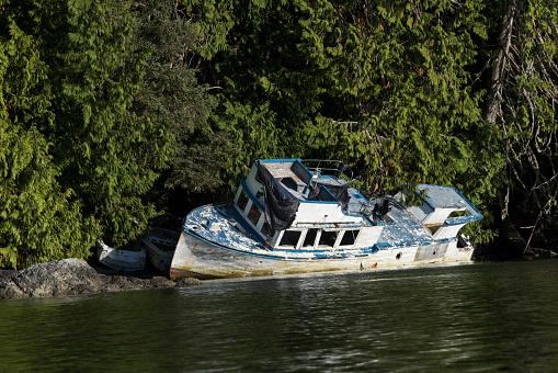 Capsizing「A boat shipwrecked along the shores of Clayoquot Sound, Vancouver Island」:スマホ壁紙(13)