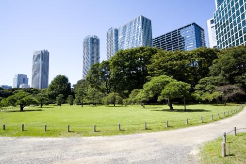 日本「オフィスビル、日本庭園」:スマホ壁紙(13)