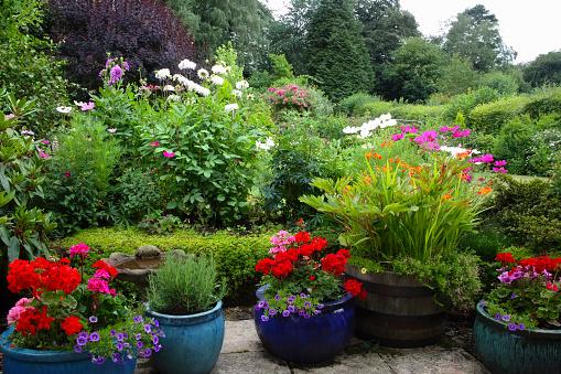 Rosemary「English Country garden on overcast summer's day.」:スマホ壁紙(13)