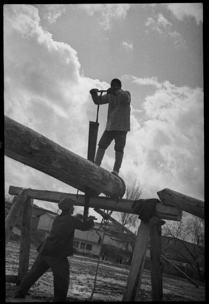 Log「On Building Site」:写真・画像(16)[壁紙.com]