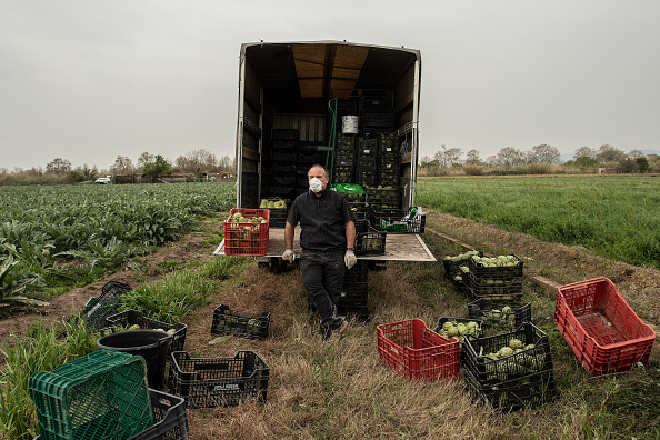 Farmer「Farmers Continue To Work As The Country Is Locked Down Due To Coronavirus」:写真・画像(9)[壁紙.com]