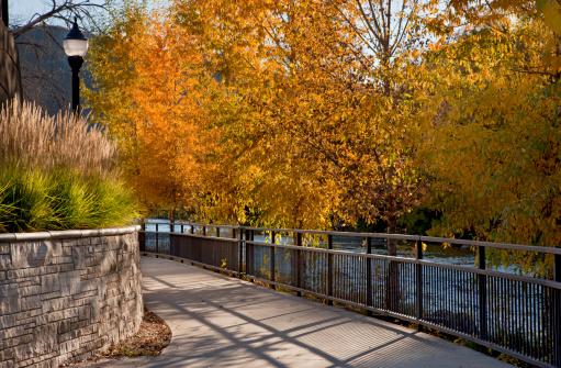 アニマス川「Scenic river walkway」:スマホ壁紙(1)