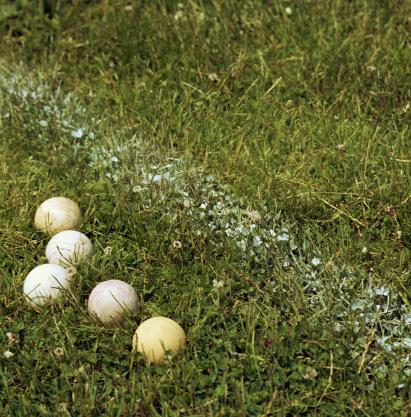 Field Hockey「Balls in grass by line on sports field」:スマホ壁紙(16)