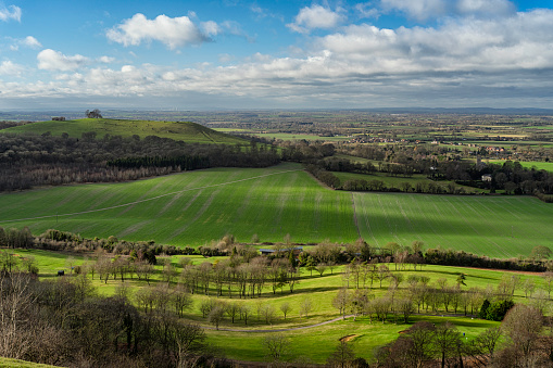 Rolling Landscape「Winter On Coombe Hill In The Chilterns, Buckinghamshire」:スマホ壁紙(5)
