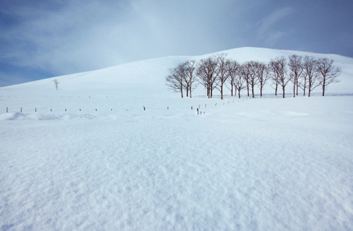 日本「Wide view of snowy filed」:スマホ壁紙(2)