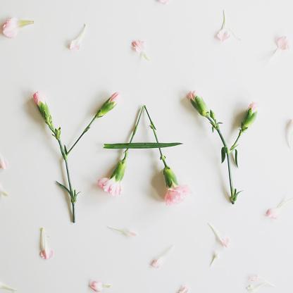 カーネーション「YAY spelled out with carnations」:スマホ壁紙(14)