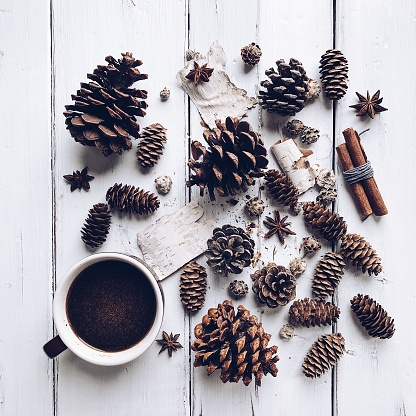 Pine Cone「Cup of coffee with pine cones and spices」:スマホ壁紙(2)