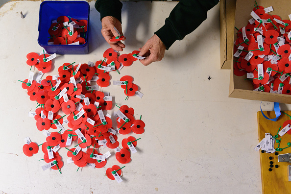 Poppy - Plant「RSA Volunteers Make More Than A Million Poppies In Preparation For Poppy Day 2017」:写真・画像(7)[壁紙.com]
