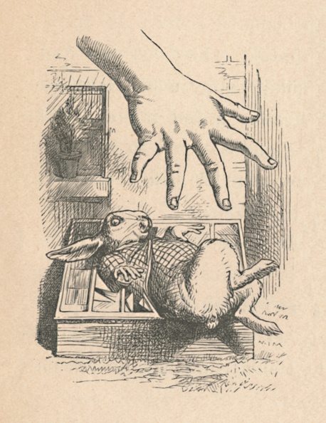 Fairy Tale「Alice Putting Her Hand Down To The White Rabbit, 1889」:写真・画像(6)[壁紙.com]