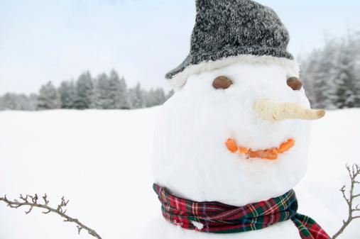 雪だるま「Snowman, close-up」:スマホ壁紙(2)