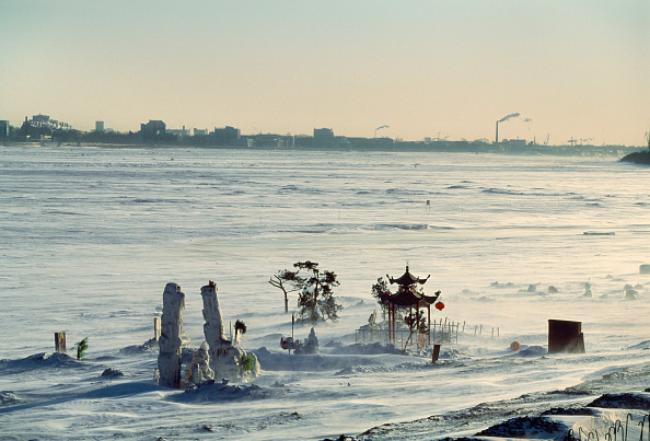Ornamental Garden「Celebration Of Chinese New Year」:写真・画像(3)[壁紙.com]