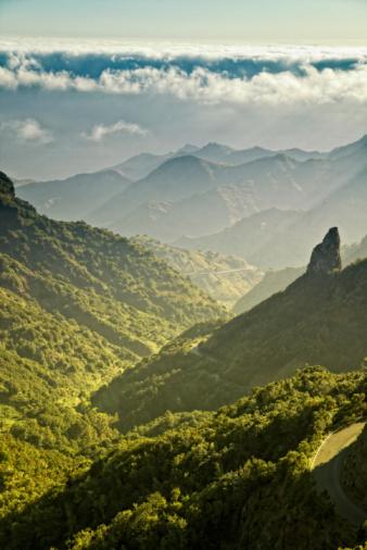 UNESCO「Landscape, Garajonay National Park」:スマホ壁紙(16)