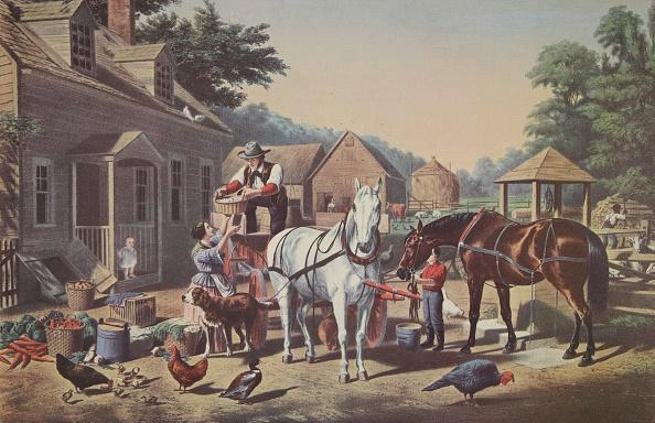 Carrot「Preparing For Market」:写真・画像(11)[壁紙.com]