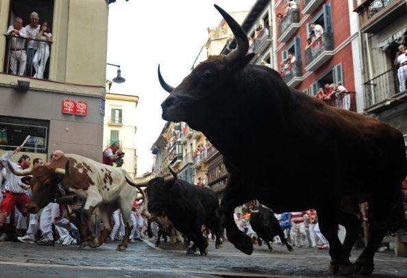 Bull - Animal「Fiesta De San Fermin Running Of The Bulls Day 3」:写真・画像(12)[壁紙.com]