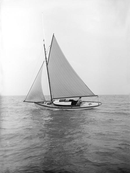 軟体動物「The Gaff Rigged Yacht Nautilus」:写真・画像(4)[壁紙.com]
