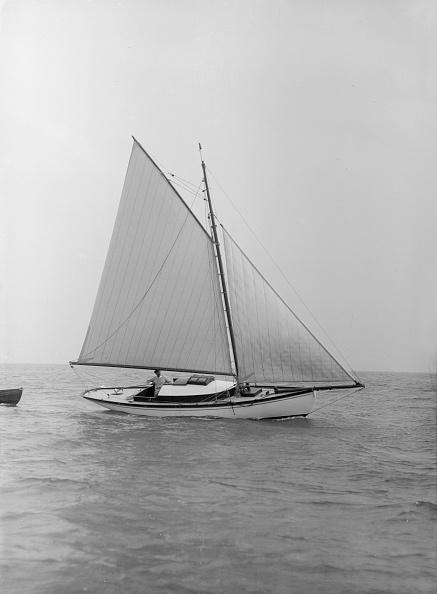 軟体動物「The Gaff Rigged Yacht Nautilus」:写真・画像(3)[壁紙.com]