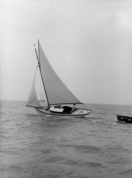 軟体動物「The Gaff Rigged Yacht Nautilus」:写真・画像(8)[壁紙.com]