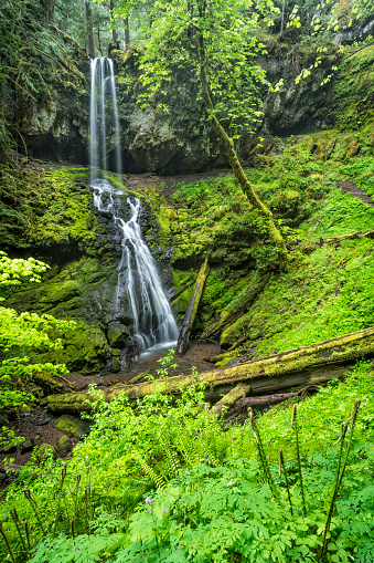 Umpqua National Forest「Upper Trestle Creek Falls, Oregon」:スマホ壁紙(11)