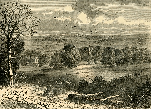 Publisher「Site Of The Crystal Palace In 1852」:写真・画像(15)[壁紙.com]