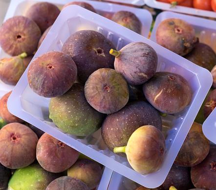 Nouvelle-Aquitaine「Figs」:スマホ壁紙(6)