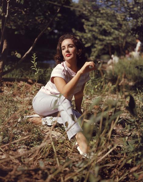Elizabeth Taylor「Portrait Of Elizabeth Taylor」:写真・画像(11)[壁紙.com]