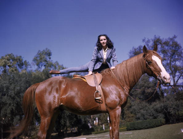 Horse「Elizabeth Taylor Mounts A Horse」:写真・画像(16)[壁紙.com]