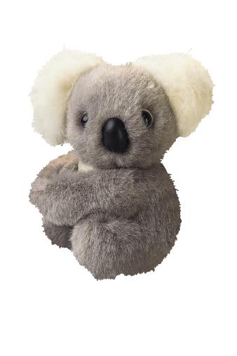 コアラ「Toy stuffed koala bear」:スマホ壁紙(17)