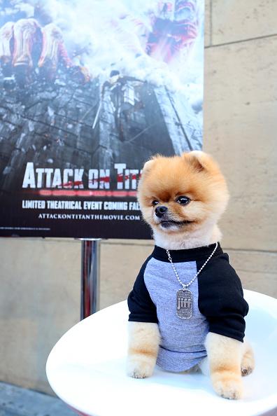 """進撃の巨人「""""ATTACK ON TITAN"""" World Premiere」:写真・画像(4)[壁紙.com]"""