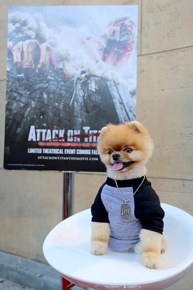 """進撃の巨人「""""ATTACK ON TITAN"""" World Premiere」:写真・画像(2)[壁紙.com]"""