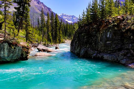 ヨーホー国立公園「カナダのロッキー山脈 - クートネー」:スマホ壁紙(14)