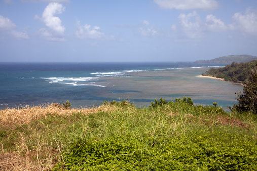 Anini Beach「Gentle Surf And Anini Beach Kauai」:スマホ壁紙(2)