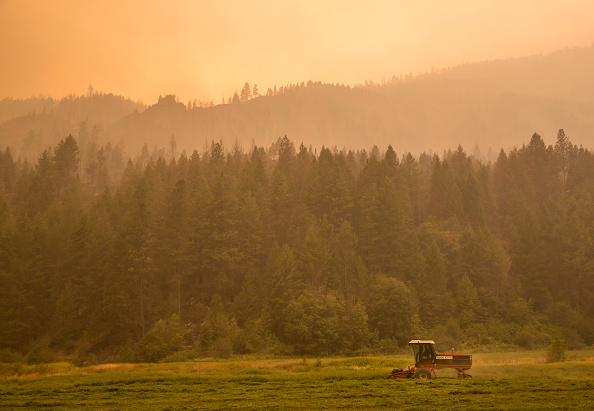 Washington State「Deadly Wildfire Rages In Washington State」:写真・画像(2)[壁紙.com]