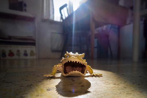 Shadow「Angry toy lizzard on floor」:スマホ壁紙(8)