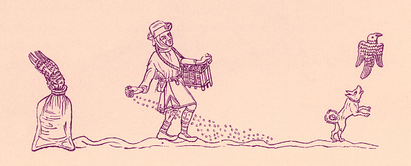 Circa 14th Century「Sowing seeds in England c」:写真・画像(3)[壁紙.com]