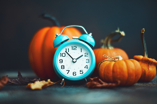 Miniature Pumpkin「Time for Fall. Teal alarm clock with leaves and Pumpkins」:スマホ壁紙(3)
