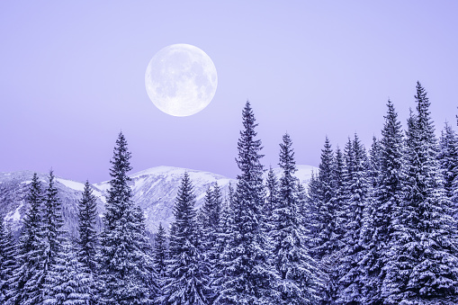 Winter Solstice「Moonrise」:スマホ壁紙(0)