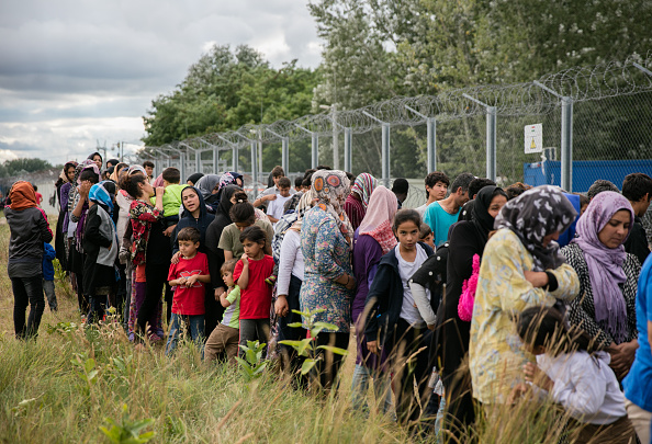 Europe「Increased Numbers Of Migrants Held At Serbian Hungarian Border」:写真・画像(14)[壁紙.com]