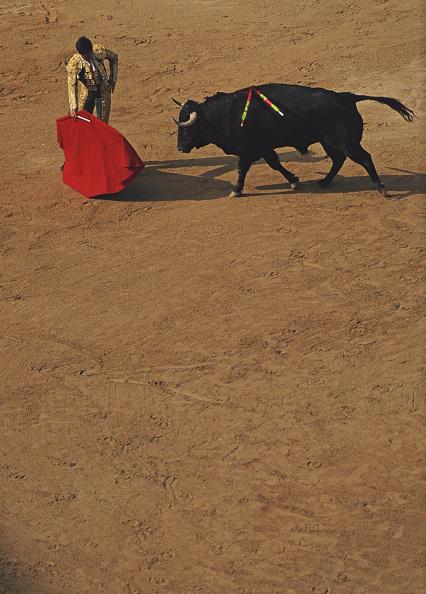 Cultures「Bullfighting」:写真・画像(5)[壁紙.com]