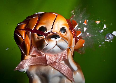 Destruction「Puppy」:スマホ壁紙(13)