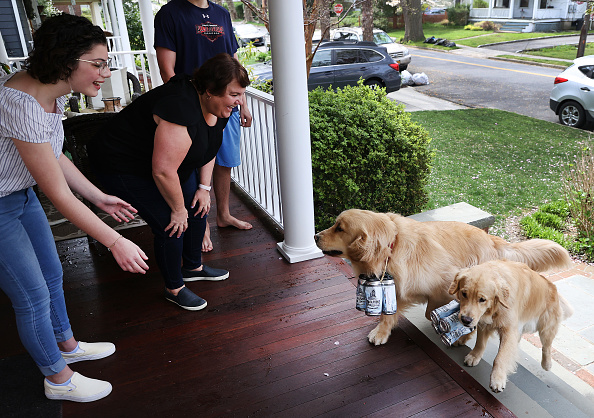Grass Family「Long Island Brewery Uses Dogs To Help Deliver Beer To Customers」:写真・画像(13)[壁紙.com]