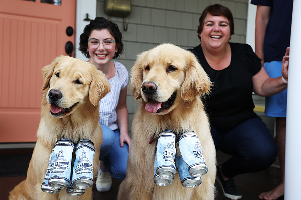 Grass Family「Long Island Brewery Uses Dogs To Help Deliver Beer To Customers」:写真・画像(2)[壁紙.com]
