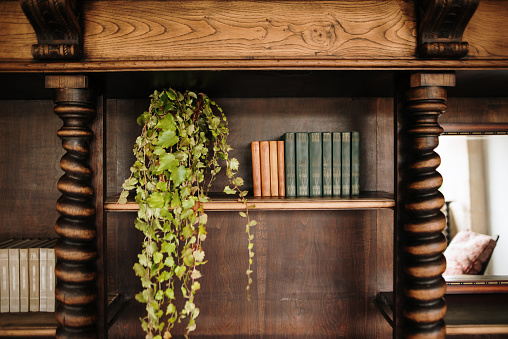 Restoring「Vintage wooden bookshelves」:スマホ壁紙(14)