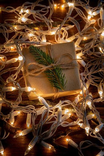 Frond「Christmas present amongst fairy lights」:スマホ壁紙(19)
