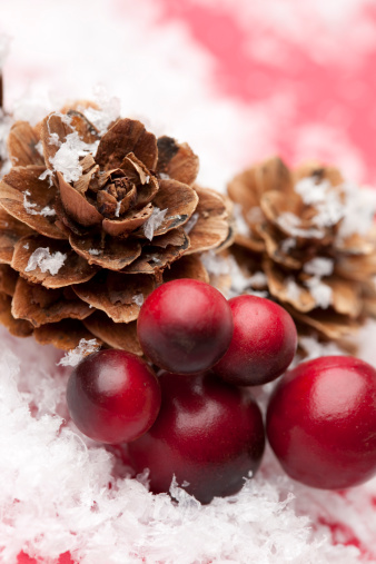 Pine Cone「Christmas Pine Cone and Berries with Snow」:スマホ壁紙(11)