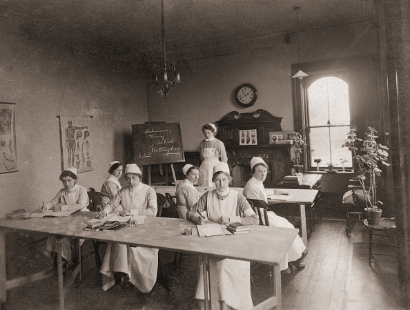 Potted Plant「Trainee Nurses」:写真・画像(13)[壁紙.com]