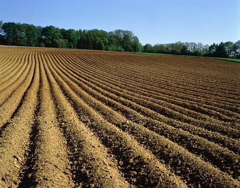 Plowed Field「Ploughed field, Baden-Wuerttemberg, Germany」:スマホ壁紙(7)