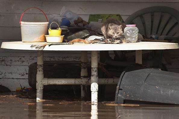 Missouri「Flooding Continues To Cause Devastation Across Midwest」:写真・画像(11)[壁紙.com]